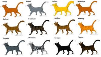warriors colors warrior cats by whispercat on deviantart
