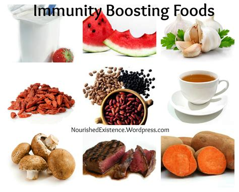 build your immune system fast proven immune boosters healthy anti cancer recipes homeopathic remedies probiotic yogurt recipes herbal tea and detox and strong immunity series volume 3 books immunity chargers and busters everything you need to