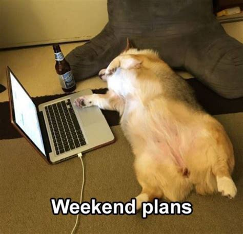 Big Home Plans weekend plans