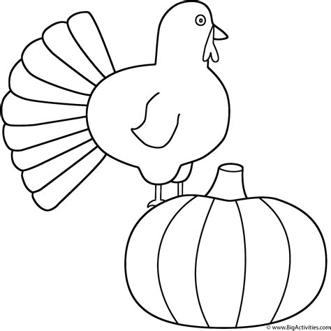thanksgiving pumpkins coloring pages turkey with pumpkin coloring page thanksgiving