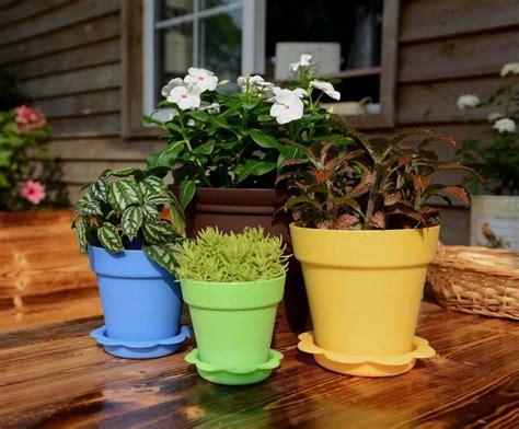 Colorful Outdoor Planters Colorful Succulent Plants Plastic Flower Pot Seeding Pot