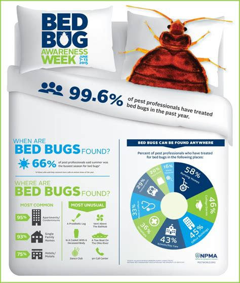 professional bed bug treatment professional bed bug treatment central pa akita pest