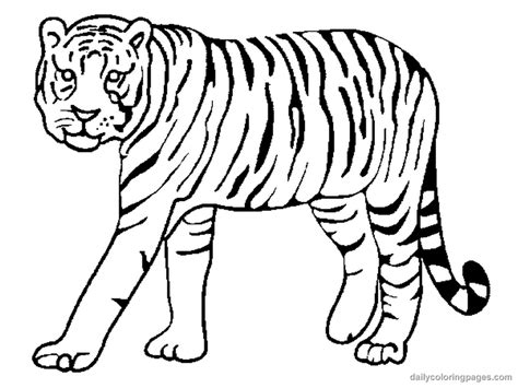 tiger color pages az coloring pages