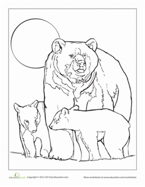 grizzly bear coloring pages bing images