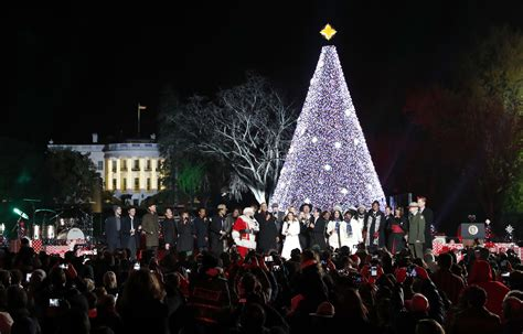 christmas trees dc national tree lighting when you can get 2017 lottery tickets wtop
