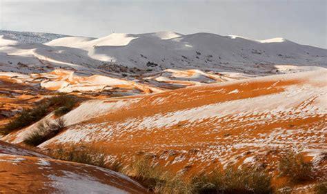 snow in sahara desert commonsense wonder snow in the sahara