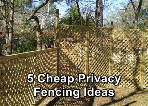 cheap fences for backyard 25 best ideas about cheap privacy fence on pinterest