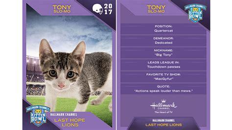 kitten bowl trading cards 2