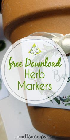 herb markers  ways     indoor garden