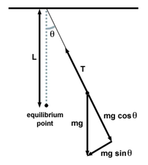 why does a pendulum swing tension during swing of pendulum physics forums the