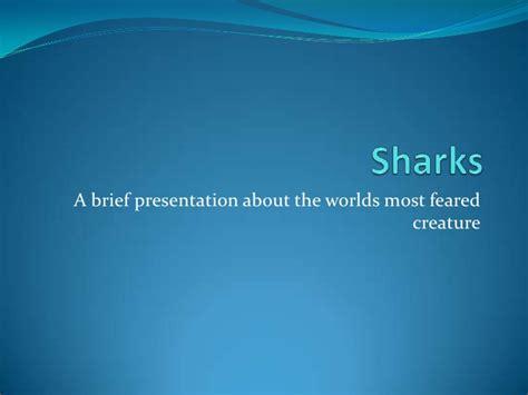 Sharks Power Point Shark Powerpoint