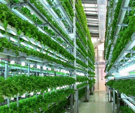 veggie factory worlds  vertical farm run