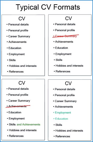 cv structure typical curriculum vitae resume template