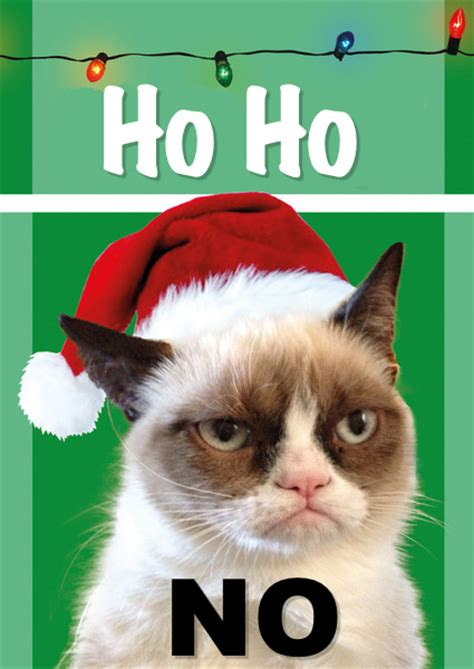 Cat Christmas Meme - grumpy cat grumpy cat says no to christmassearch