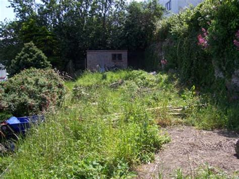 overgrown garden doctor of traditional chinese medicine vancouver area