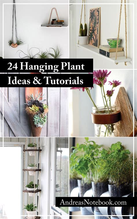 Indoor Flower Plants by 24 Ways To Hang Plants On The Wall Andrea S Notebook