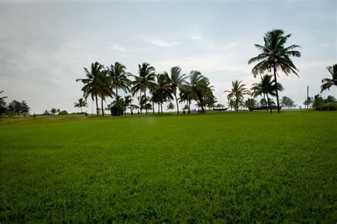 Best Wedding Planner, Decorator, Holiday Inn Resort, Goa