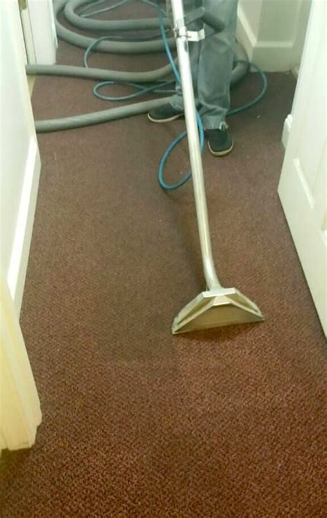 in home upholstery cleaning group home carpet cleaning gentle clean carpet care