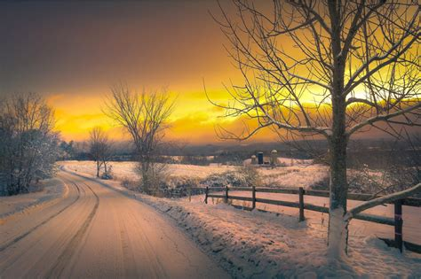 Winter Yellow yellow winter sunset wallpapers and images wallpapers