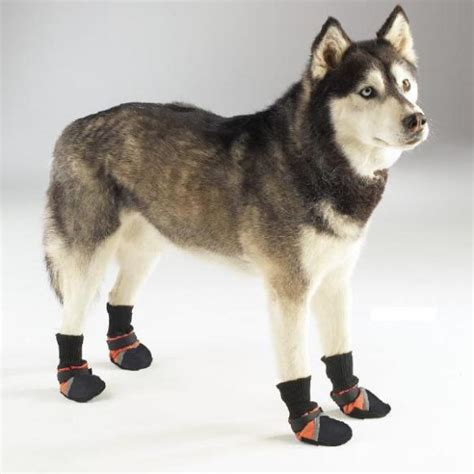 boots for dogs boots for dogs selection of boots low prices ebay