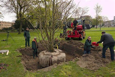 Garten Und Landschaftsbau Dinslaken 4614 by Aktuelles Eickhoff Gartenbau Landschaftsbau Tiefbau