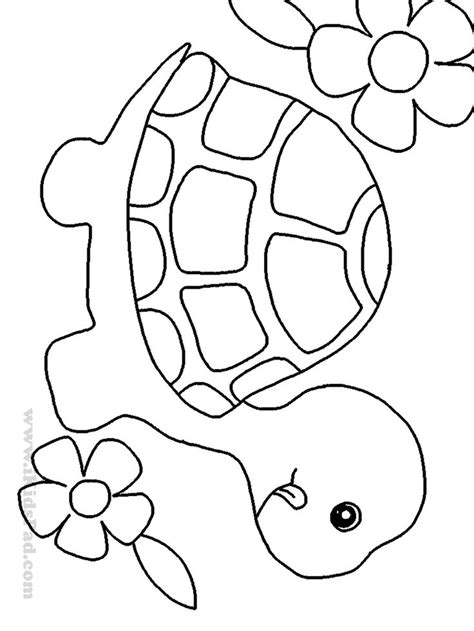 simple turtle coloring page 25 gorgeous cute animals to draw ideas on pinterest