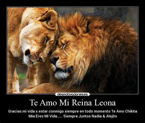 imagenes te extraño mi reina te amo mi reina leona desmotivaciones