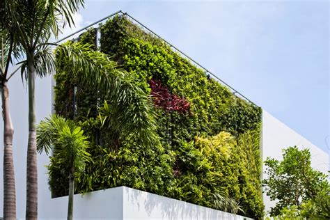 Vertical Garden House Thao Dien House Delights Us With A Beautiful Vertical
