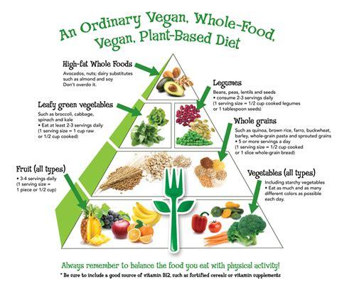 free printable vegetarian recipes vegetarian food pyramid printable www pixshark com