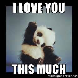 Cute I Love You Meme - i love you this much cute baby panda meme generator