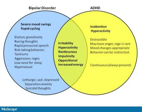 mental health diagram bipolar adhd and bipolar disorder on