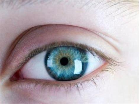 imagenes de ojos naturales ranking de 191 cu 225 l es el mejor color de ojos listas en