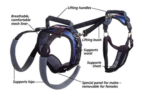 rear lift harness or rear assist pet care lift harness disabled mobility systems