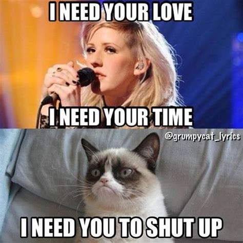 Grumpy Cat Love Meme - pinterest the world s catalog of ideas