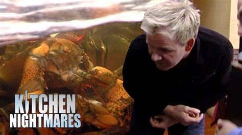 gordon ramsay kitchen nightmares dead lobster archives gordon reacts to finding dead lobster in the fish tank