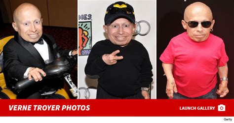 Mini Me Returns To Rehab by Mini Me Actor Verne Troyer Going To Rehab After Being