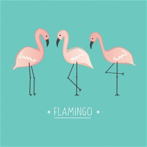 flamingo wallpaper on love it or list it flamingo icons free download