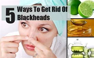home remedies to get rid of blackheads 5 best and effective ways to get rid of blackheads find