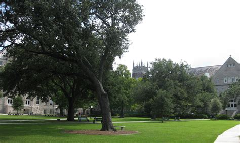 Mba Current Student Information Tulane by File Tulane Jpg Wikimedia Commons