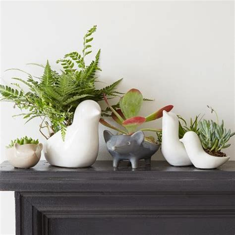animal planters more is a must animal planters
