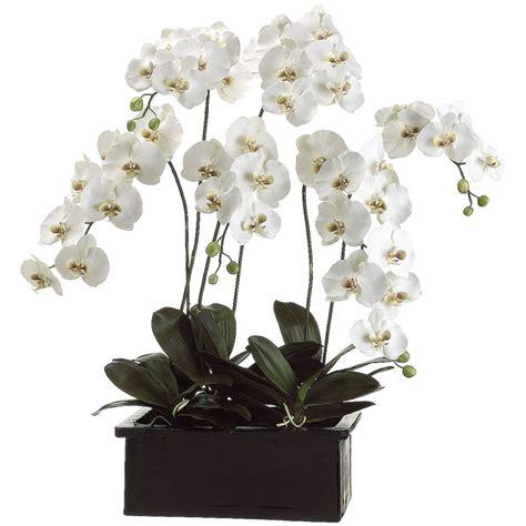 Grand Phalaenopsis Orchid Artificial Flower Arrangement 17 Best Images About Orchid Arrangements On