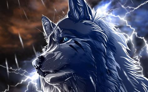 Anime Wolf by Anime Wolf Wallpapers Wallpaper Cave