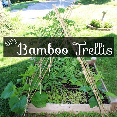 diy bamboo garden trellis this pug life