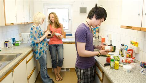 dorm room survival tips tibsar dorm survival guide what options are available