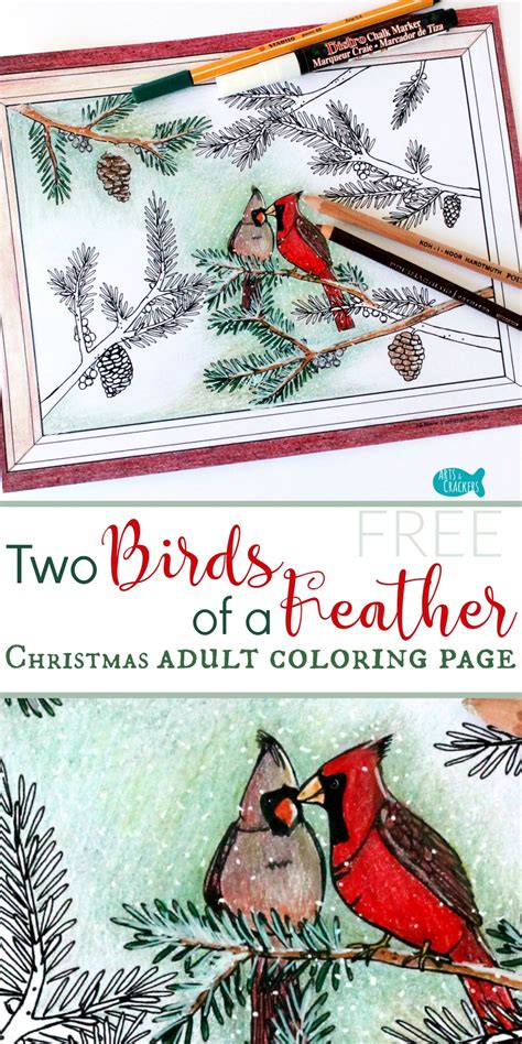 winter birds books winter cardinals coloring page for adults