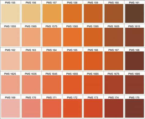 pantone color code best 25 pms color chart ideas on pms colour