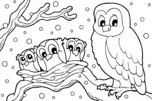 Owl Print Out Coloring Pages L