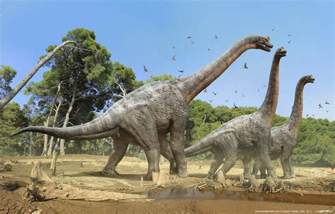 lihat film dinosaurus 7 dinosaurus ini diduga masih hidup di pedalaman hutan