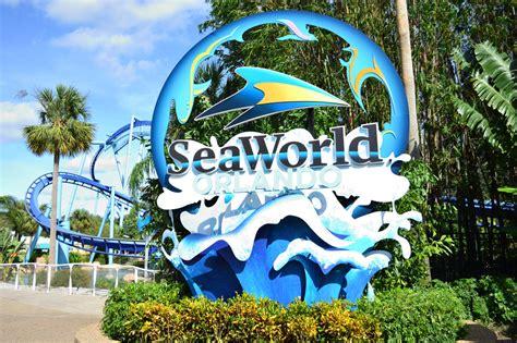 sea orlando six reasons you need to check out seaworld orlando