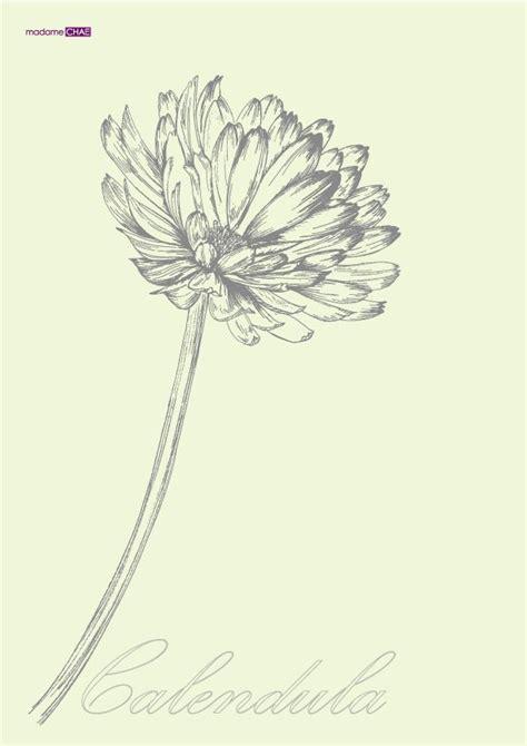 october flower tattoo 25 best ideas about birth flower tattoos on